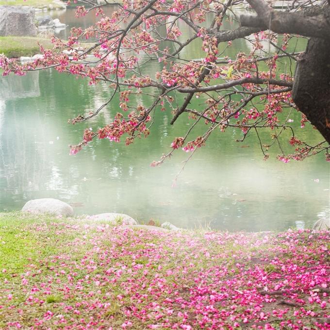 Жизнь в стиле Дзен. 7 Уроков Мудрости Перемен.  Shutterstock_107915099_19